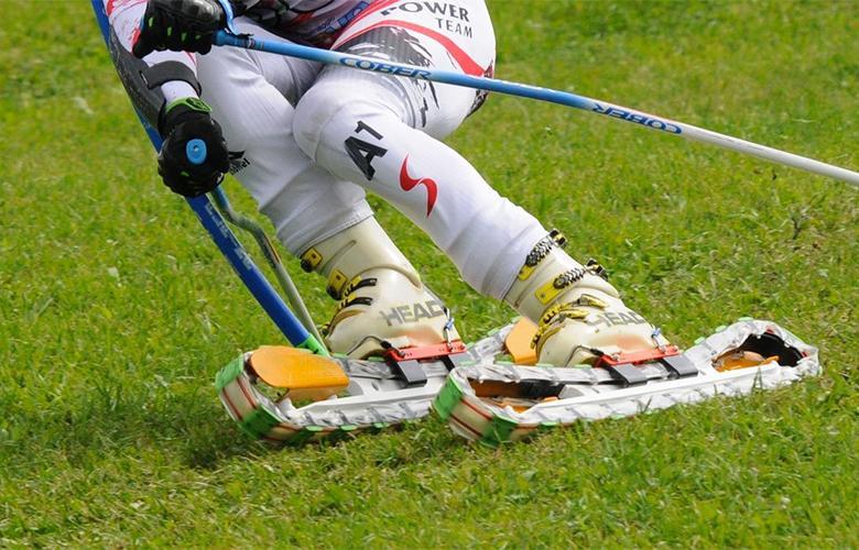 Лыжи на траве